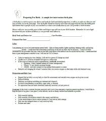 How To Plan Baby Birth Date Simple Birth Plan Template Urldata Info