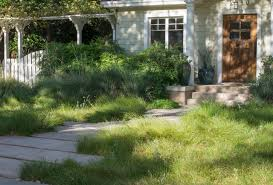 traditional front lawn