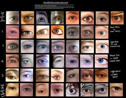 Different Shades Of Blue Eyes Chart Vampire Abilities Eyes Research Vampire Learning Centre
