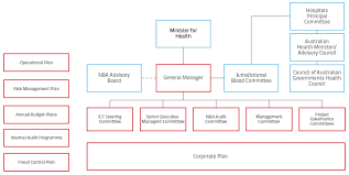 Corporate Governance Structure Chart National Blood Authority Annual Report 2013 Governance