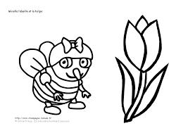 Fleur Tulipe Coloriage L L