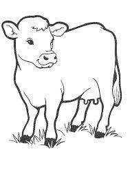 printable animal coloring pages farm animal coloring pages free printable cow coloring pages for kids cow