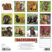 Dachshund Color Chart Dachshund Dogbreed Gifts Com Dachshund Calendars