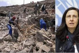 Image result for کارمندان سازمان ملل  کمکهای بینالمللی  یمن را میدزدند؟