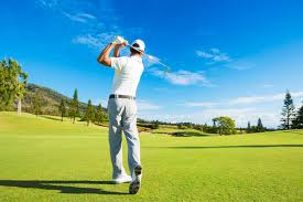 Image result for golf Swing images