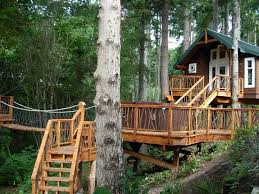 Simple Cool Tree Houses Designs 25 House Masters Ideas On Pinterest Rustic Intended Models Design