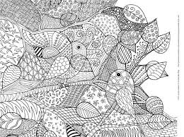 Adult Bird Coloring Pages Printable Jokingartcom Adult Bird