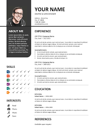 International Format Resume Bayview Stylish Resume Template