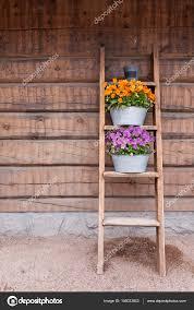 Blumen Auf Leiter Regal An Wand Lehnen Stockfoto Juhku