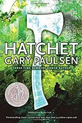hatchet summary guide book club discussion questions hatchet paulsen