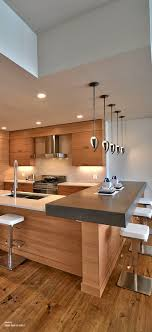 Fine Contemporary Kitchens Best 25 Ideas On Pinterest Kitchen And Models Design
