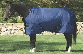 About Blanketing And Horse Clothing Dover Saddlery