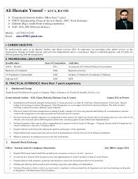 Internal Auditor Resume Objective Internal Audit Resume Foodcityme 94