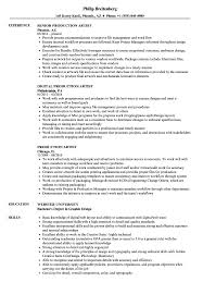 Entry Level Graphic Design Jobs In Phoenix Az Production Artist Resume Samples Velvet Jobs