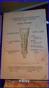 Antique Butcher Chart Early 1900s Vtg Antique Butcher Shop Store Veal Meat Cuts