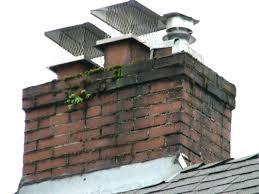 vent tech diameter rain cap spark fireplace screen home depot arrestor gas chimney