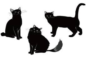 かっこいいクール黒猫さんのイラスト無料素材 じゃぱねすくライフ