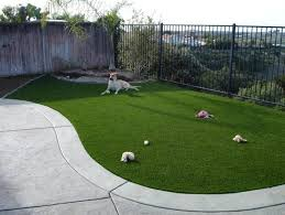 artificial grass for pets. Benefits Of Having Artificial Grass For Dogs(pets) Area Pets