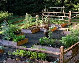 Small Picture 328 best Vegetable Gardening images on Pinterest Garden ideas