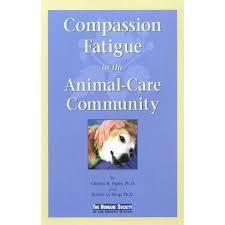 essay on compassion to animals casino flashy gq essay on compassion to animals
