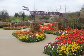 make plans to visit for our spring celebration tulsa botanic blooms presented by osage s we ve got a few more weeks of bulb blooms