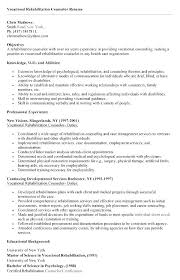 School Counselor Resume Examples Sample Counseling Resume Sample
