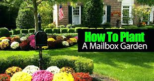 mailbox landscaping with culvert. Beautiful Culvert Mailbox Landscaping Design Landscape Photos How To Plant A  Garden Video Inside Mailbox Landscaping With Culvert A