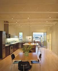 light hardwood floors with dark cabinets. Dark Cabinets Floors Best Attractive Home Design Kitchen With Light Wood Hardwood