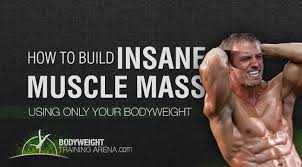 weight training planning workout how to build insane calisthenics muscle mass with