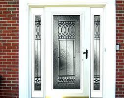 glass storm doors s for with pet door screen menards