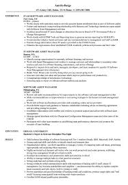 Excellent Reo Asset Manager Resume Pictures Inspiration Entry
