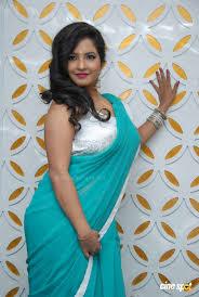 Subha Punja Sexy Photos In Saree