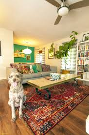oriental rug the doodle house doodlehouselivingroom eclectic labradoodlepanch modern ecelectic living room decorated bathrooms
