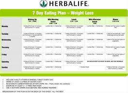 Herbalife Meal Plan Herbalife Nutrition Club Business Plan