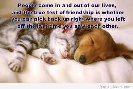 Nice Friendship Quotes Unique Best Friends Forever Images Quotes And Friendship Quotes