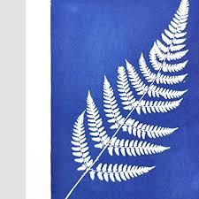 AVA Prime Sunprint Cyanotype Paper, Nature Printing ... - Amazon.com