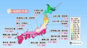 桜 前線 2021