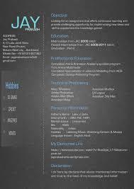 3d Artist Resume Format Considerdisagreed Ml