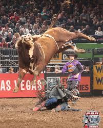 pro bull riding. Beautiful Pro Bullriding_pbrmsg_article2jpg Intended Pro Bull Riding