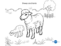 Small Picture Stunning Sheep Coloring Page Contemporary New Printable Coloring