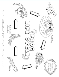 Kindergarten Plant Anatomy Worksheet Image Collections Human besides More  Less  or Equal   paring Quantities   Lesson Plan likewise Kindergarten Worksheets For Sequencing In Spring   Sequencing furthermore Parts Of A Plant 2 Worksheet   Edplace   FREE Printable Worksheets also Photo Calendar Template   Create a Printable Photo Calendar additionally  additionally Kindergarten Worksheets For Sequencing In Spring   Sequencing moreover Best 25  Kindergarten lesson plans ideas on Pinterest   Circle besides  additionally Lesson Plans for Kindergarten   Education besides Wedding flowers planner  4 pages    Office Templates. on parts of a plant kindergarten worksheet weeklyplanner website