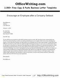 Copy Paste Resume Template Reference Customer Service Resume Samples