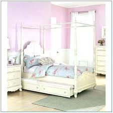 Twin Size Canopy Bed Home Design Ideas Living Room Girl Archives ...