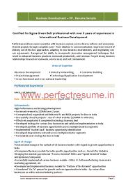 Business Business Developer Resume Resume For Study