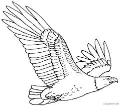 Eagles Coloring Pages Hawk Bald Eagle Of Philadelphia Printable