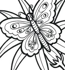 Summer Theme Coloring Pages Printable Easy Chronicles Network