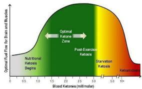 Healthy Living Chart Ketsos Healthy Living Guelph Guelph Natural Health