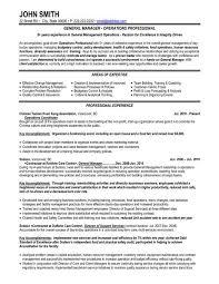 Front End Manager Resume Produce Clerk Resume Samples Visualcv