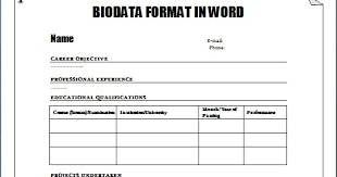 biodata form job application sample biodata for job application