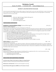 Job Resume Sample Resume Retail Manager Format Professional Pillypad Store 96